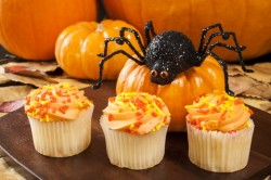 http://www.dreamstime.com/stock-photo-halloween-spider-cupcakes-pumpkins-three-image32071890
